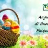 A tutti i Visitatori Buona Pasqua!